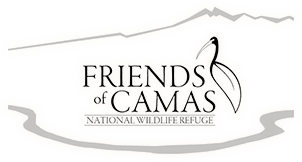 Friends of Camas